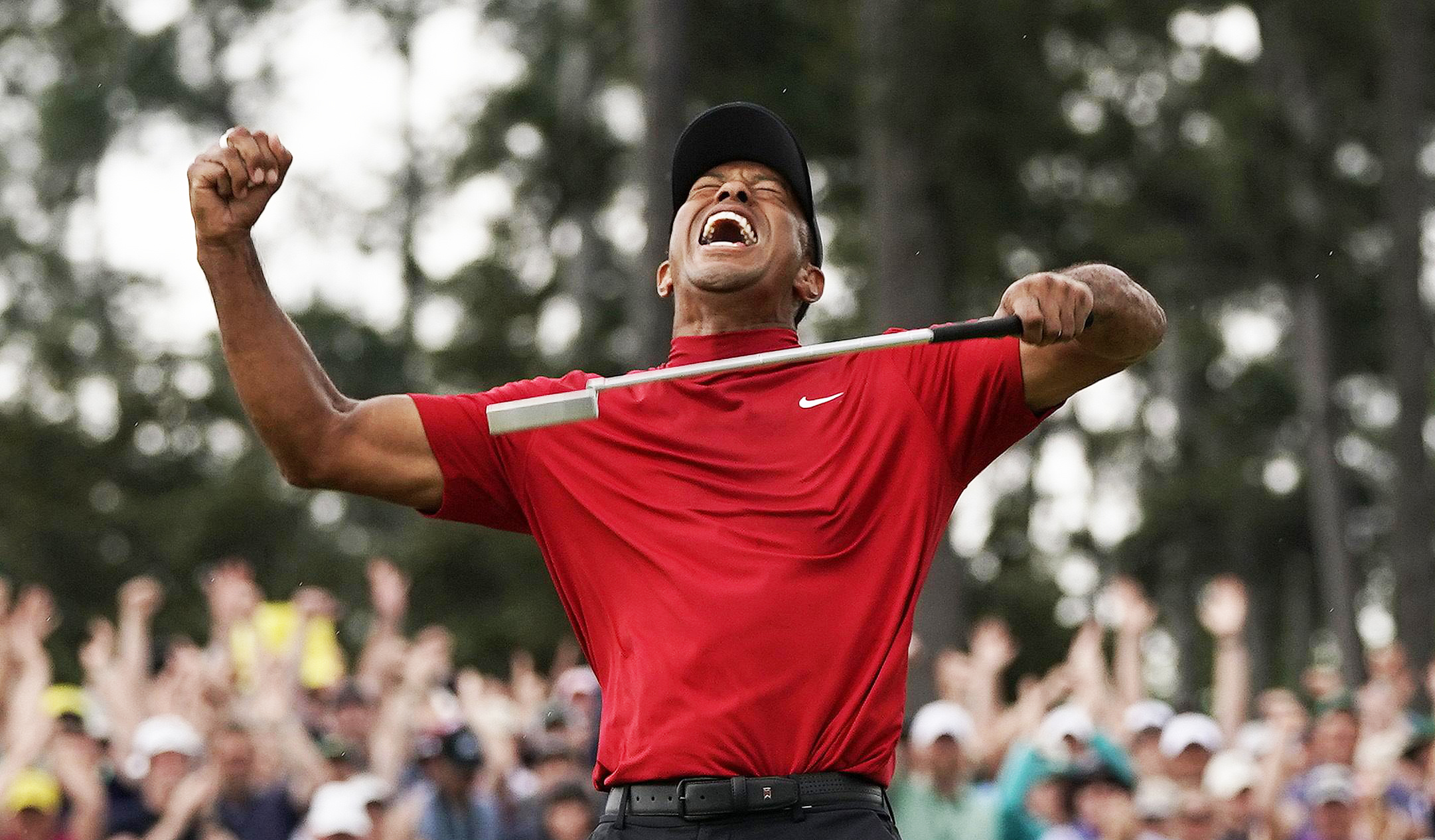 Tiger Woods gagne les Masters _ golf software